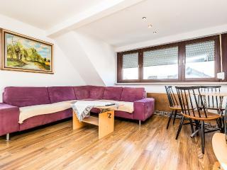 T12 Troisdorf - Sinzig vacation rentals