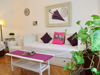 Apartment Piano In The Centre Of Zagreb - Zagreb vacation rentals