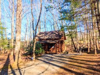 Cozy Creek - Cosby vacation rentals