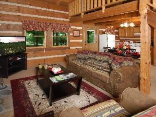 Hanky Panky - Cosby vacation rentals
