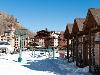 13 Ski In Ski Out - Durango vacation rentals