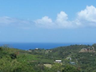 Villa Tessa Rose - Isla de Vieques vacation rentals