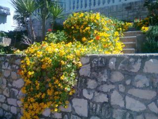 Apartman Nadilo - Blato vacation rentals