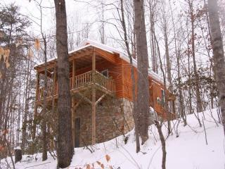 The Cottage:  Private/Wooded Getaway - Hamptonville vacation rentals