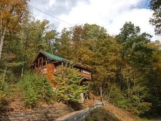 Sugar Bear- Addorable Newer Log Cabin/Sleeps6 - Newport vacation rentals