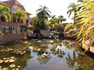 Resort style Living in Cairns - Edge Hill vacation rentals