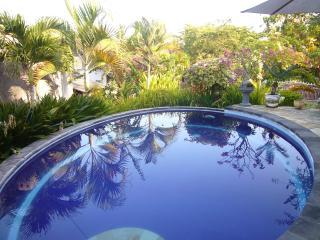 Luxe Villa for rent on Bali - Kaliasem vacation rentals
