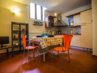 San Frediano Apartment E in Florence - Florence vacation rentals