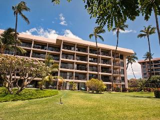 Renovated One-Bedroom Condo with Ocean View - Kihei vacation rentals
