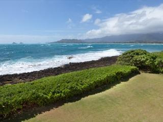 Kailua Oceanfront - 4 bedroom home with Amazing Views - Kailua vacation rentals