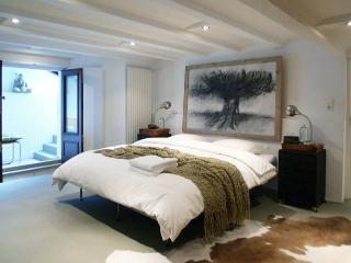 The Artist Apartment - North Holland vacation rentals