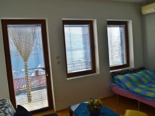 Black Apartment (Villa Ohrid) - Ohrid vacation rentals