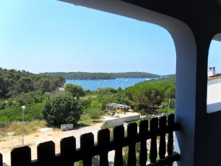 CR106Pula - Apartment 1 in the Blue house - Pula vacation rentals