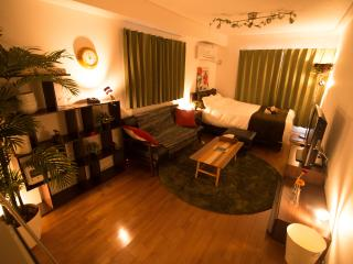 New!! Shinjuku Gyoen 1minite from station - Minato vacation rentals