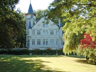 Chateau des Fees - Massay vacation rentals
