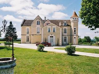 Chateau Des Seigneurs - Vendee vacation rentals