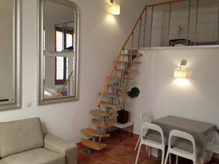Luxury Apt in the heart of Avignon (Provence) - Vaucluse vacation rentals