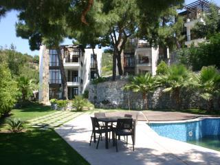 artemisia apartment 1 - Bodrum vacation rentals