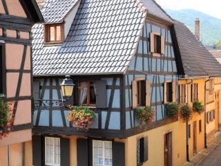 La Maison Bleue - Kientzheim vacation rentals