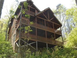Luxury Cabin 4br/4.5ba 150 off Wk HotTb Theater Wi - Snowshoe vacation rentals