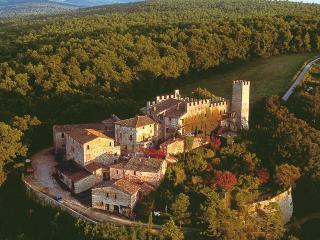 La Fattoria - Castelnuovo Berardenga vacation rentals