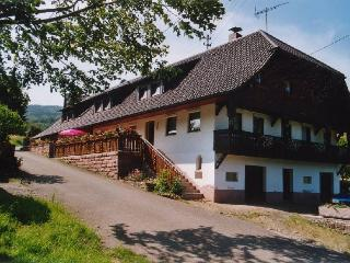 Vacation Apartment in Steinach - 915 sqft, 3 bedrooms, max. 5 people (# 7836) - Lahr vacation rentals
