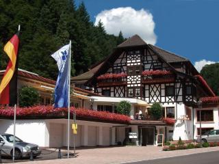Guest Room in Bad Peterstal-Griesbach -  (# 7850) - Bad Rippoldsau-Schapbach vacation rentals
