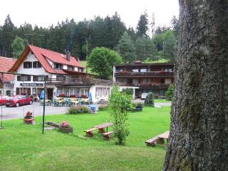 Vacation Apartment in Altensteig -  (# 7860) - Baden Wurttemberg vacation rentals
