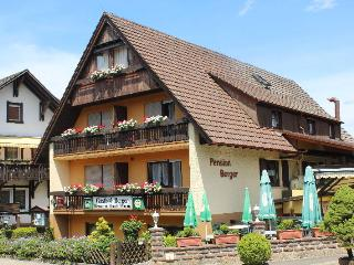 Vacation Apartment in Zell am Harmersbach -  (# 7893) - Gengenbach vacation rentals