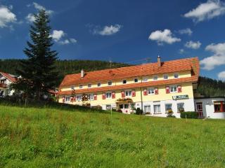 Vacation Apartment in Enzkloesterle -  (# 7902) - Enzklösterle vacation rentals