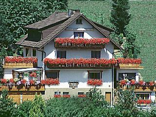 Vacation Apartment in Bad Peterstal-Griesbach -  (# 7998) - Bad Peterstal-Griesbach vacation rentals