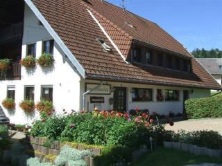 Vacation Apartment in Todtnau -  (# 8035) - Todtnau vacation rentals