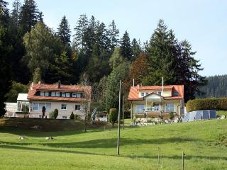 Vacation Apartment in Enzkloesterle - 1-2 People (# 8051) - Black Forest vacation rentals