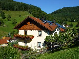 Vacation Apartment in Wolfach - 861 sqft, 3 bedrooms, max. 6 persons (# 8052) - Lauterbach vacation rentals