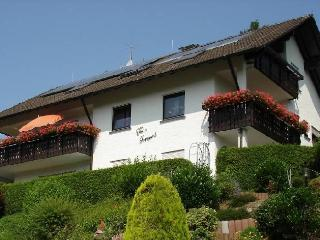 Vacation Apartment in Zell am Harmersbach -  (# 8059) - Steinach vacation rentals