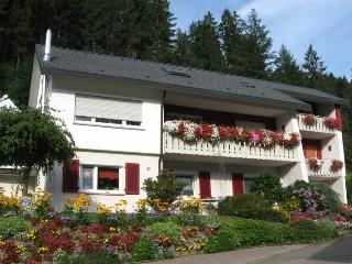 Vacation Apartment in Ottenhoefen im Schwarzwald - 667 sqft, 1 to 2 bedrooms, max. 5 people (# 8074) - Ottenhoefen im Schwarzwald vacation rentals