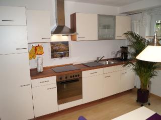 Vacation Apartment in Stegen - 678 sqft, 2 Adults + 2 Children (# 8084) - Bonndorf vacation rentals