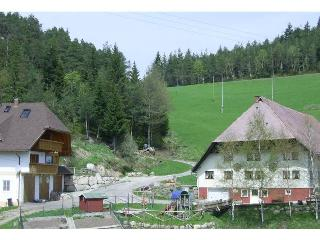 Vacation Apartment in Hornberg -  (# 8113) - Furtwangen vacation rentals