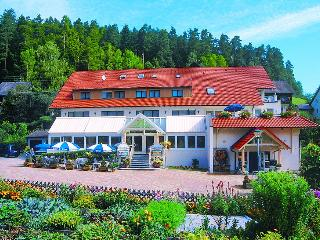 Guest Room in Enzkloesterle -  (# 8119) - Black Forest vacation rentals