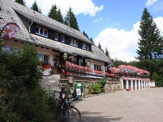 Guest Room in Dachsberg -  (# 8223) - Lenzkirch vacation rentals
