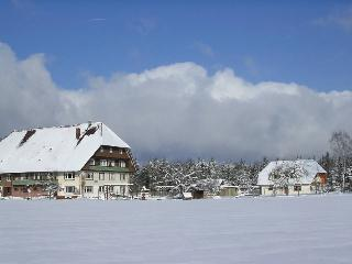 Vacation Apartment in Schramberg -  (# 8292) - Schramberg vacation rentals