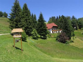 Vacation Apartment in Todtnauberg - 1 living room / bedroom, max. 2 persons (# 8305) - Black Forest vacation rentals