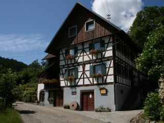 Vacation Apartment in Ottenhoefen im Schwarzwald - 732 sqft, 2 bedrooms, max. 5 people (# 8360) - Ottenhoefen im Schwarzwald vacation rentals
