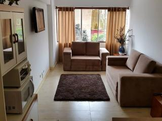 Comfortable apartment in Miraflores - Miraflores vacation rentals