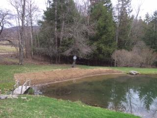 Secluded home, Private Beach/Pond - Downsville vacation rentals