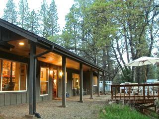 Yosemite Owls Nest and Bass Lake - Shaver Lake vacation rentals