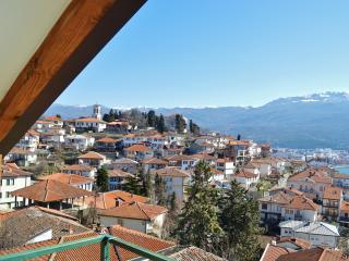 Yelow Apartmetn (Villa Ohrid) - Ohrid vacation rentals