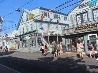 Exciting, spacious, vacation condo - Provincetown vacation rentals