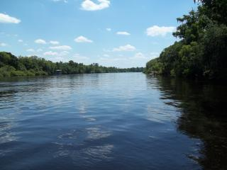 Beautiful Suwannee River Getaway - Fort White vacation rentals