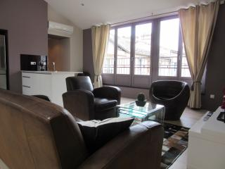 Very nice apartment in the golden triangle - Bordeaux vacation rentals
